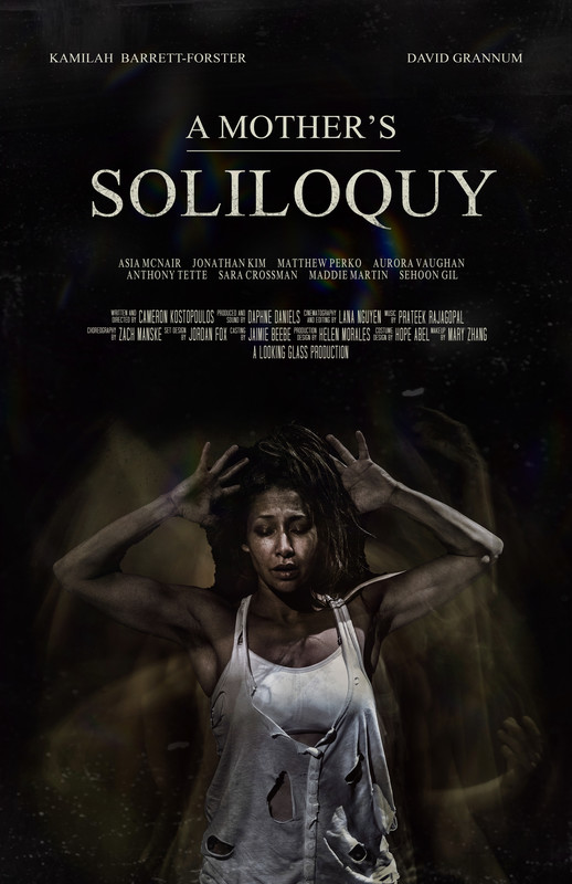 a_mothers_soliloquy_movie_poster