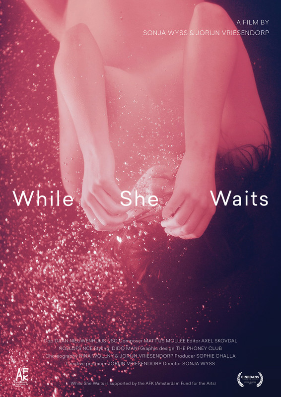 while_she_waits_movie_poster
